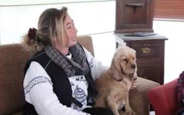 Best Dog Club Ads Başarı Hikayesi